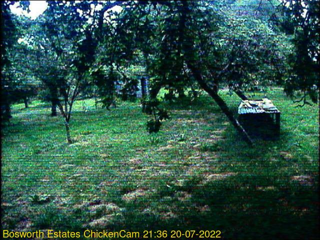 webcam picture,  19 Feb 16:11