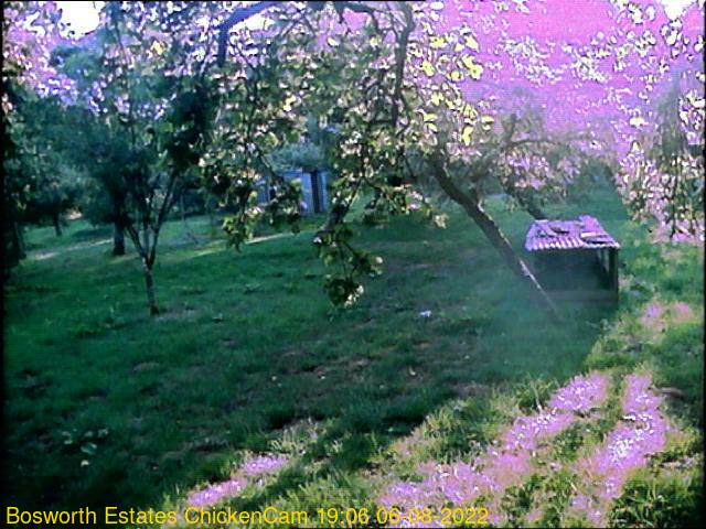 webcam picture,  13 Oct 18:06