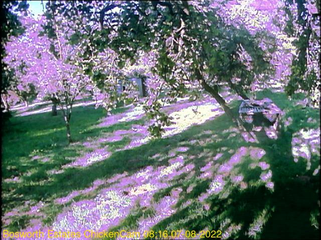 webcam picture,  13 Oct 18:26