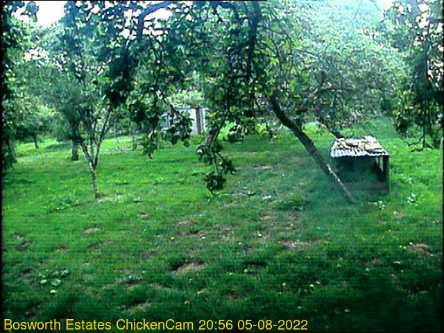 webcam picture,  13 Oct 17:46