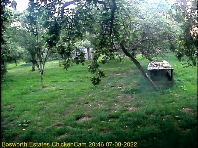 webcam picture,  13 Oct 17:56